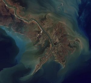 mississippi_estuary